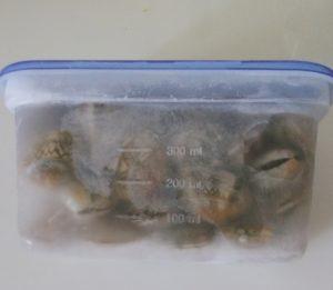 冷凍での保存方法